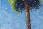 Tall Palm