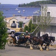 Horse-drawn carriages in Bar Harbor