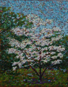 Jess's Dogwood, oil on canvas, 16 X 20 (c) Kathleen Hall