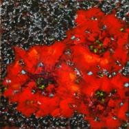 3 Poppies on Dark Background