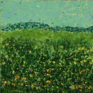 Field with Yellow and Purple Flowers